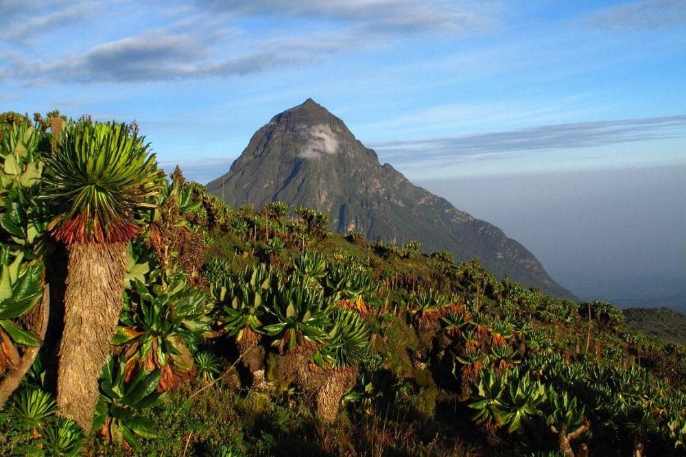 Volcan Rwanda