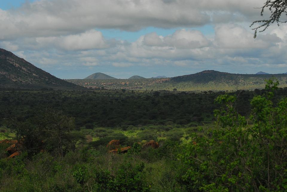 Tsavo au Kenya